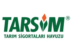 Tarsim